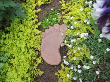 一歩・二歩・三歩・・・・の通路 | さわやか信州の庭 toledo