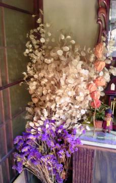 dried flower2