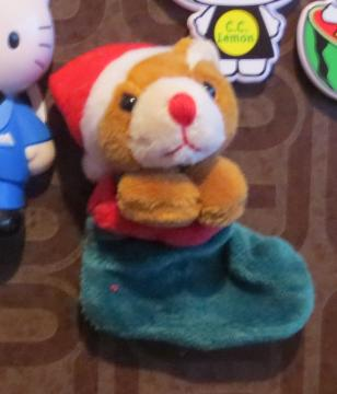santa bear in socks   magnet